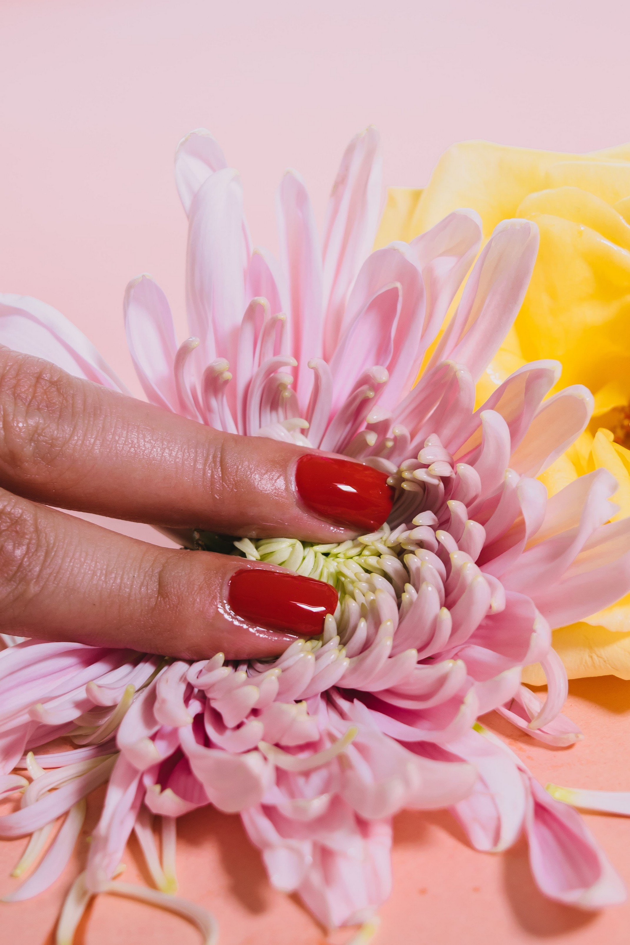 close up of red painted nails, possibly Water-Permeable, laying on a pillow of flower petals.